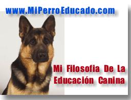 educacion canina de ruben borja